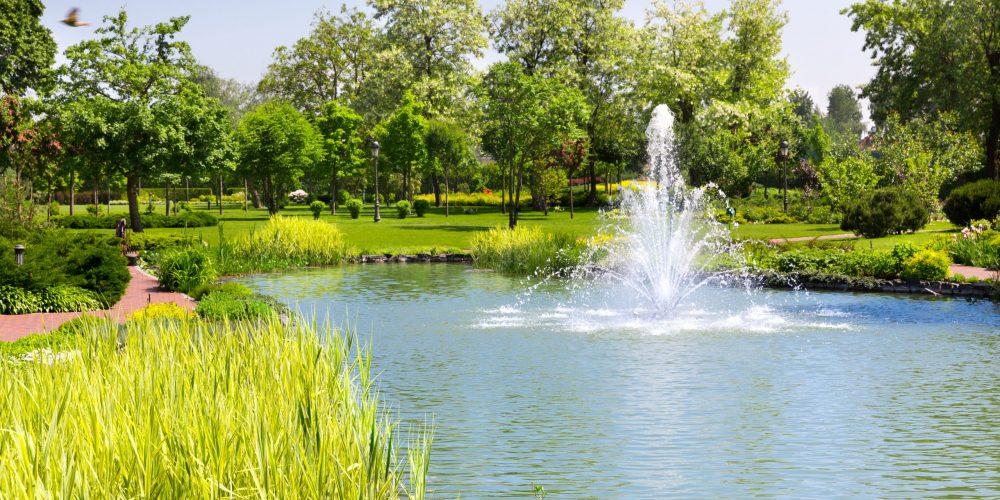Beautiful,Lake