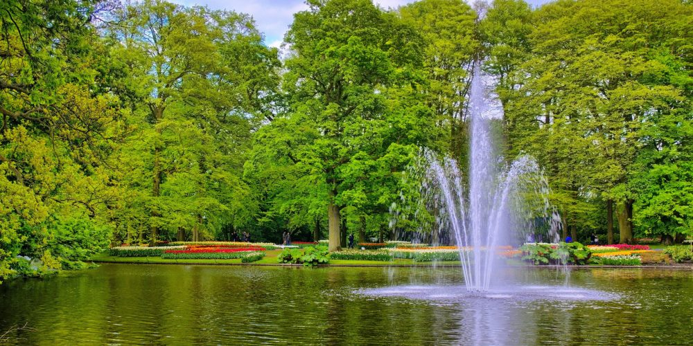 Fountain,In,The,Pond,With,Green,Trees,,Keukenhof,Park,,Lisse