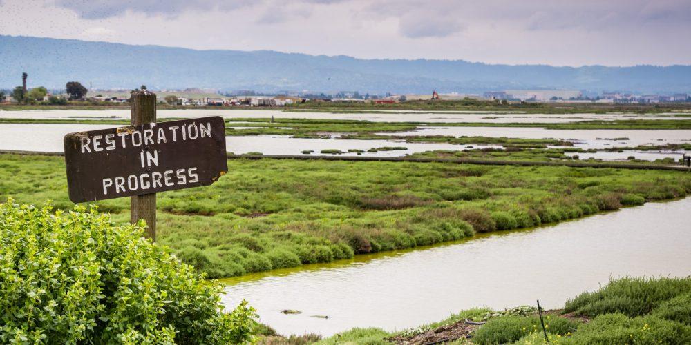 Restoration,Sign,In,The,Wetlands,In,Alviso,Marsh,,Don,Edwards